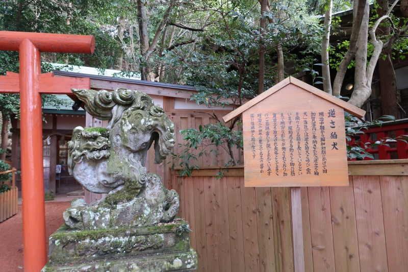 石浦神社 逆さ狛犬