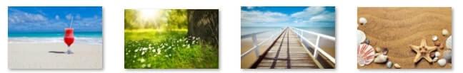 夏をイメージした画像4つ